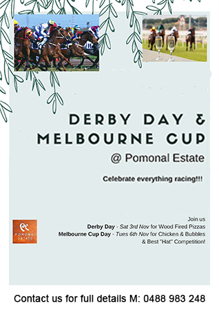 Derby Day and Melbourne Cup 2018 flyer